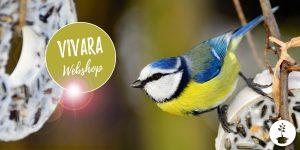 Vivara websop voor vogelvoer, voederhuisjes en nestkastjes